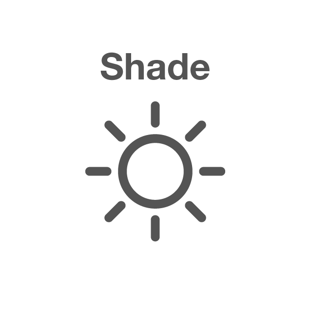 Shading solutions